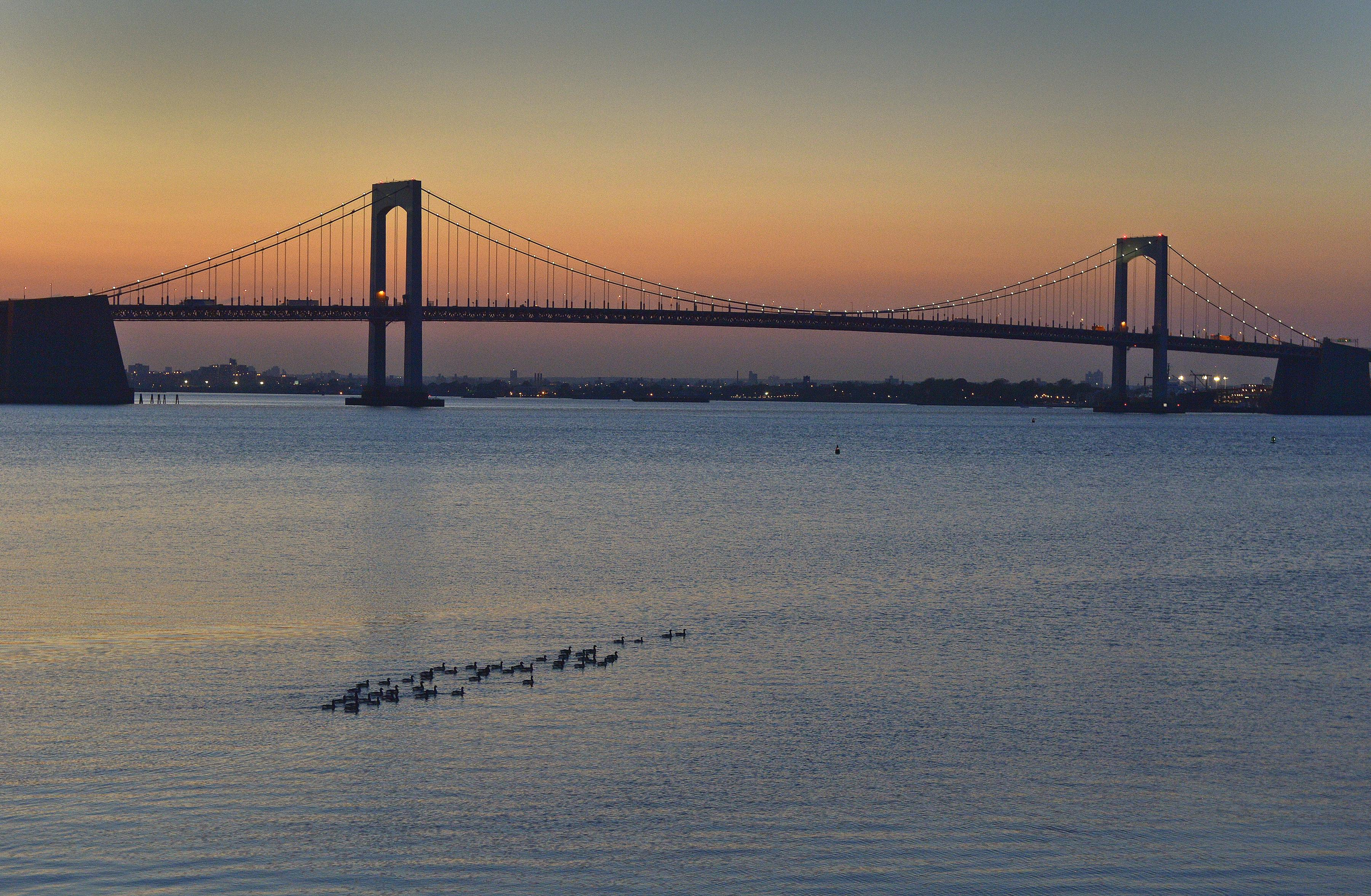A bridge stretches across a body of water with a sunset visible in the background and waterfowl in the foreground.