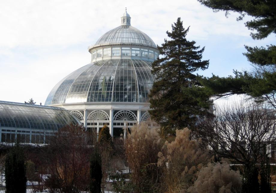 A white building with a large glass dome and a smaller glass dome on top stands in a thicket of brush and trees. Light from the left illuminates some of the big, green plants just visible through the glass dome.